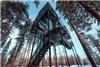 لوکس ترین خانه درختی جهان +تصاویر