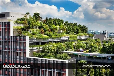 پارکی در بام ساختمان ها