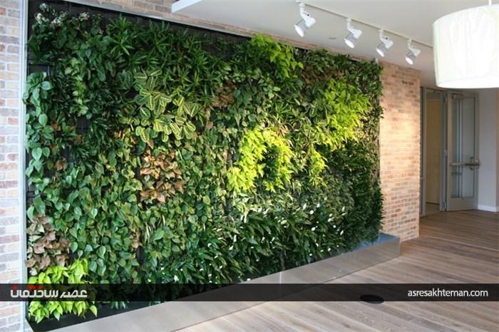 دیواری که هوای خانه را پاکسازی می کند