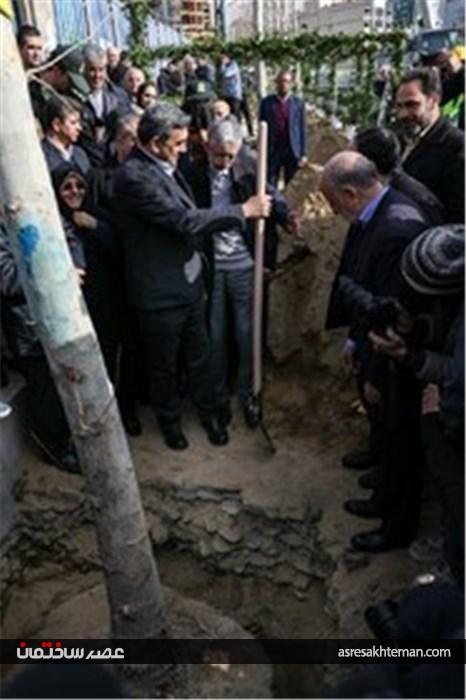 ساماندهی و احیای درختان چنار خیابان ولیعصر